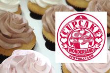 A Cupcake Wonderland
